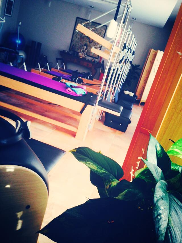 LuzLife Lotus Studio